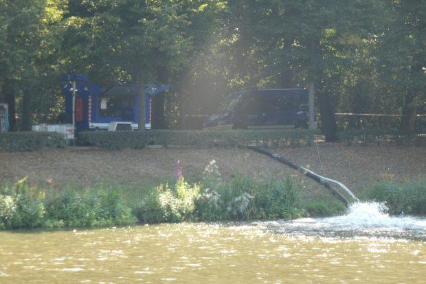 Mithilfe einer Pumpe wird das Wasser aus dem Tümpel ins Elsterflutbett abgeleitet. Foto: L-IZ.de