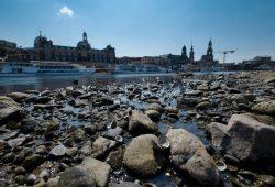 Niedrigstwasser in der Elbe in Dresden im Jahr 2018. Foto: André Künzelmann / UFZ