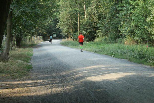 """Die Neue Linie als """"Hochweg"""" am Wildpark. Foto: Ralf Julke"""