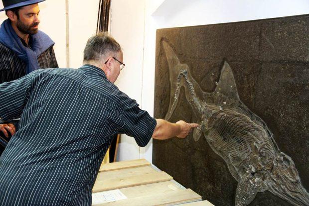 Frank Trostheide erläutert sein Vorgehen bei der Präparation eines tadellos erhaltenen Ichthyosauriers. Foto: Naturkundemuseum Leipzig