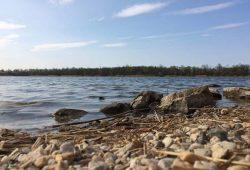 Am Kulkwitzer See. Foto: L-IZ