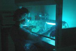 Forscherin im Reinraum des Max-Planck-Instituts für evolutionäre Anthropologie. Foto: MPI für evolutionäre Anthropologie
