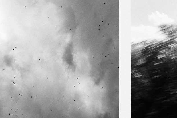 Erik Swars, o. T., 2020, Privatbesitz, (Ausschnitt) © Künstler