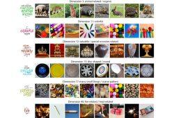 """Von """"tierisch"""" bis """"feuerassoziiert"""": Das Gehirn schlüsselt unsere Umgebung in insgesamt 49 Merkmale auf, nach denen es alle Objekte kategorisiert (hier nur als Ausschnitt gezeigt). Foto: Hebart/ MPI CBS"""