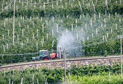 Traktor im Vinschgau. Foto: Jörg Farys, Umweltinstitut München