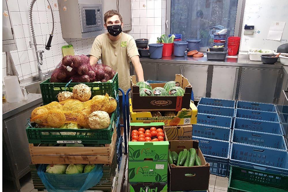 Ein Weihnachts-Leckerbissen für dein Lieblingstier - Zoo Leipzig startet Spendenaktion - Gemüse-Obst-Tagesration für Pongoland © Zoo Leipzig