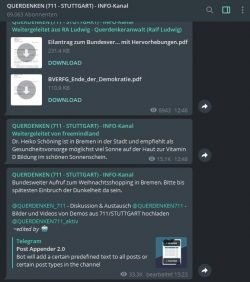 Reaktionen auf das Urteil des Bundesverfassungsgerichtes im Stuttgarter Querdenken-Infokanal. Screen Querdenken 711, Telegram