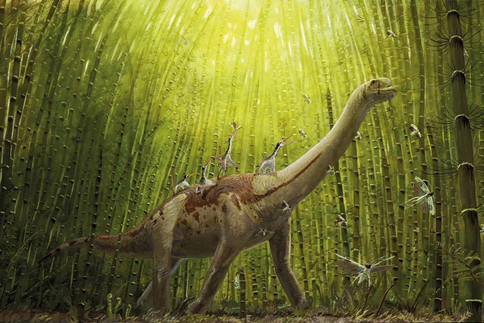 Einblick in die neue Graphic Novel zu Europasaurus. Foto: Joschua Knüppe