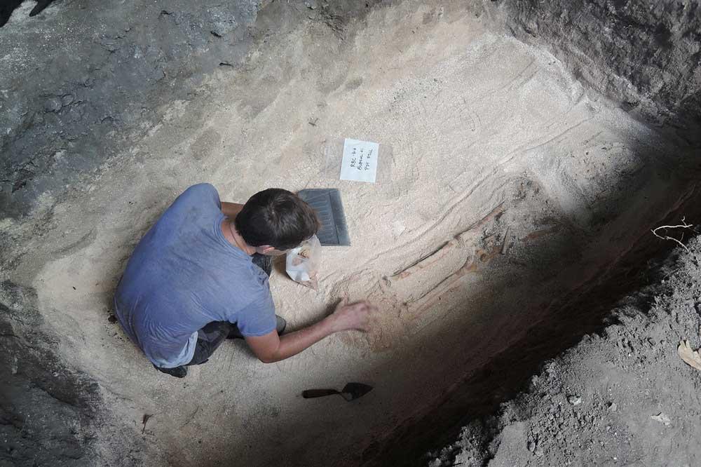 Archäologe Mike T. Carson bei der ersten Freilegung eines der Skelette. Foto: Hsiao-chun Hung