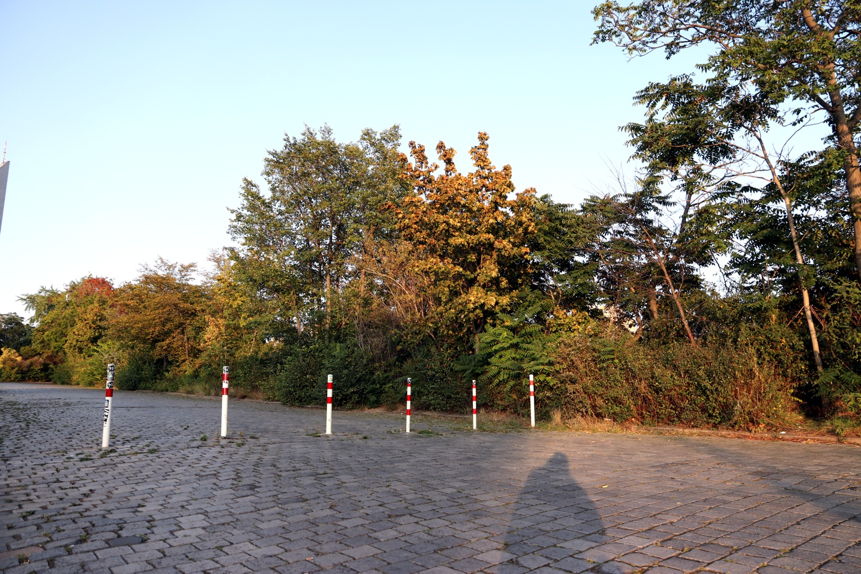 Der Leuschnerplatz 2020. Foto: LZ