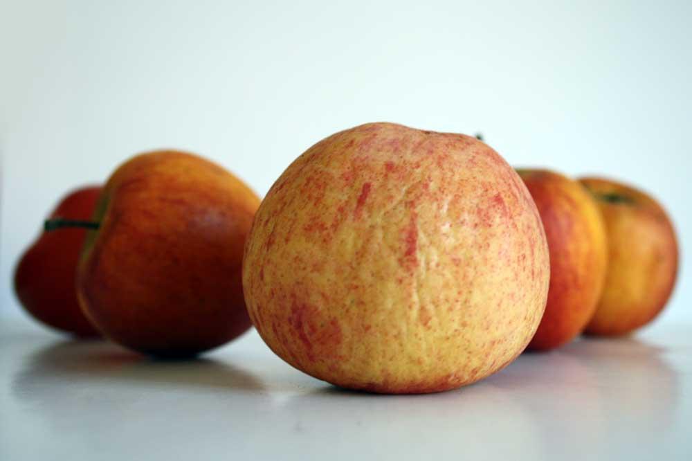 Obst ist 2020 deutlich teurer geworden. Foto: Ralf Julke