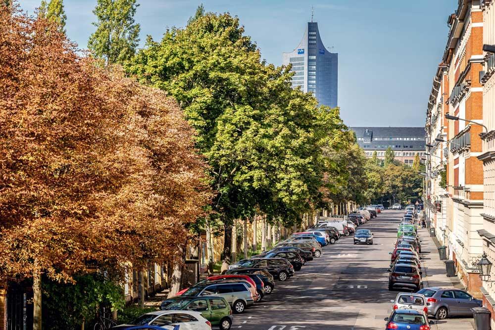 Mehr Straßenbäume in Städten (wie hier im Leipziger Stadtzentrum) können dazu beitragen, die psychische Gesundheit, aber auch das lokale Klima, die Luftqualität und den Artenreichtum zu verbessern. Foto: Philipp Kirschner