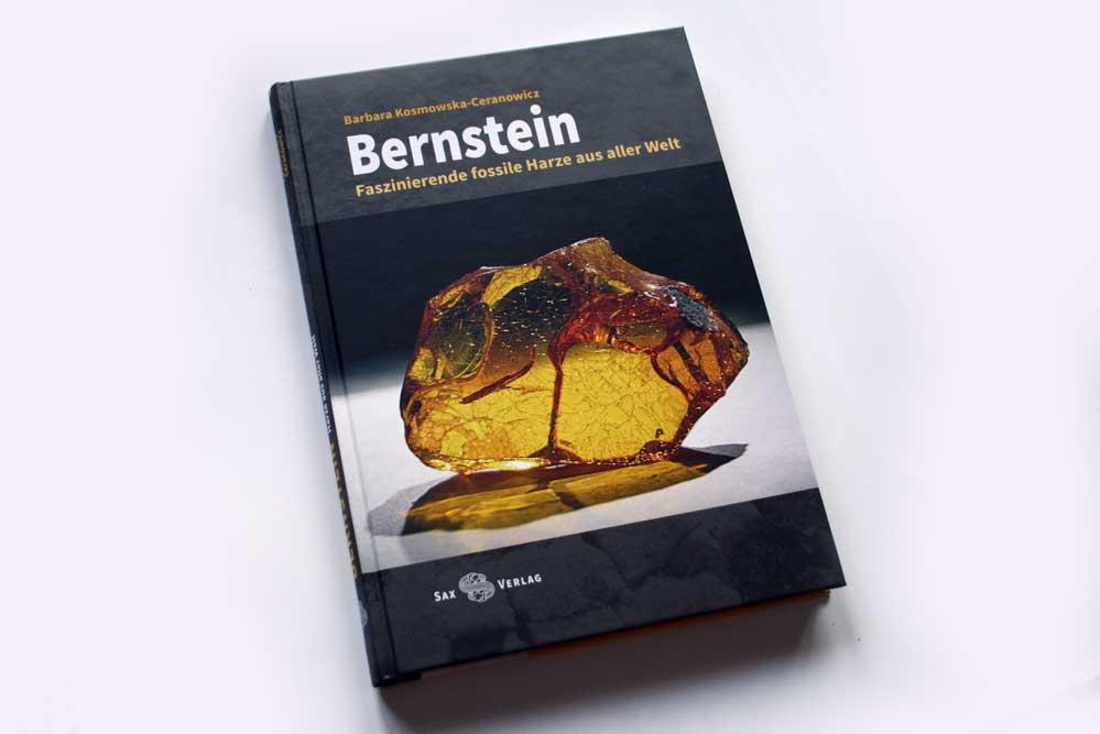 Barbara Kosmowska-Ceranowicz: Bernstein. Foto: Ralf Julke