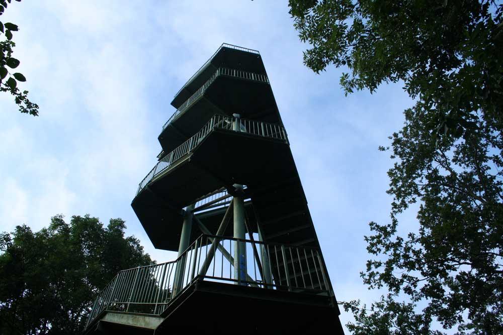 """Der sogenannte """"Wackelturm"""" auf dem Rosentalhügel. Foto: Ralf Julke"""
