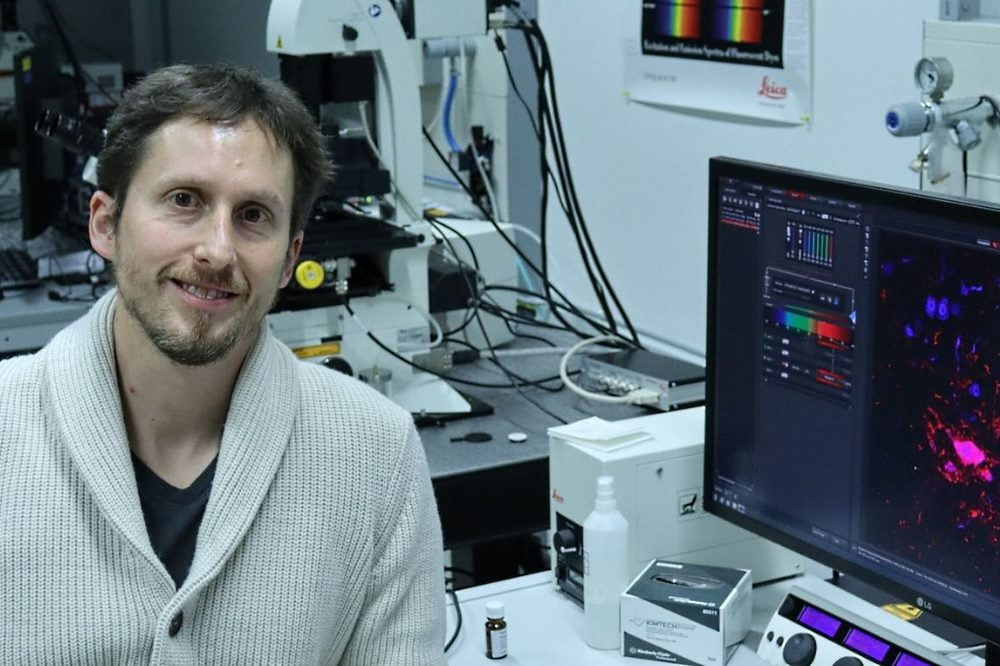 Dr. Christian Simon forscht am Carl-Ludwig-Institut für Physiologie der Uni Leipzig. Foto: Florian Gerstner