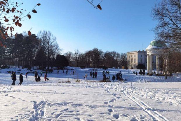 Eisschluhlaufen im Park. Foto: Tilly Domian