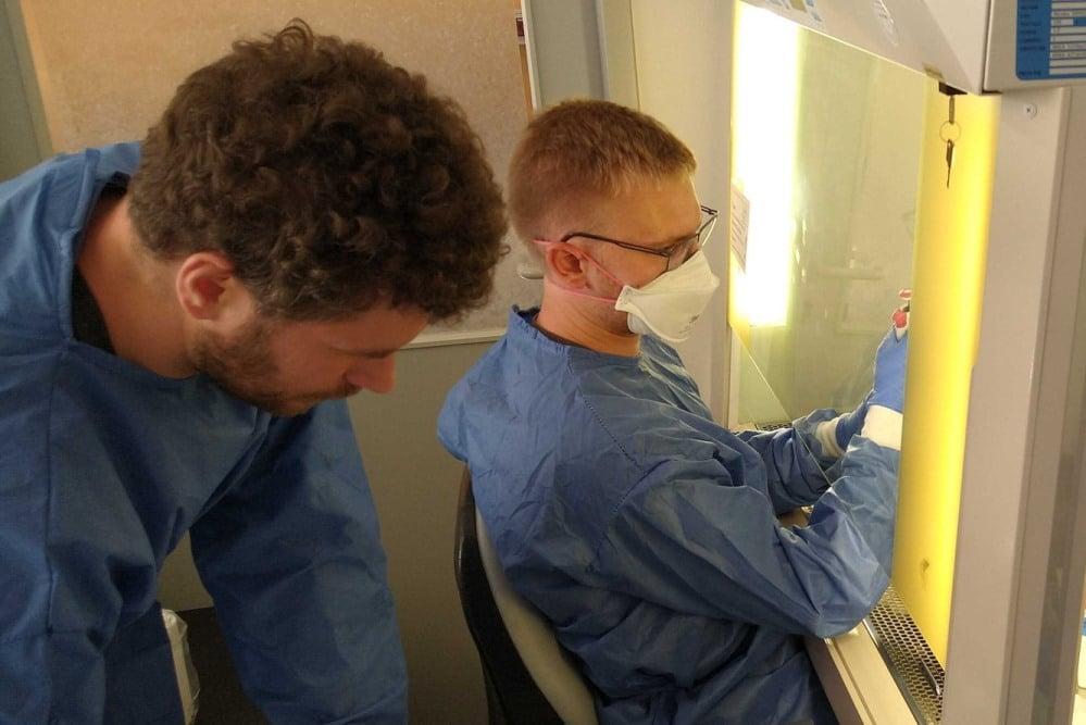 Forscher Stephan Riesenberg (links) und Lukas Bokelmann (rechts) im Labor am Klinikum St. Georg in Leipzig. Foto: MPI für evolutionäre Anthropologie