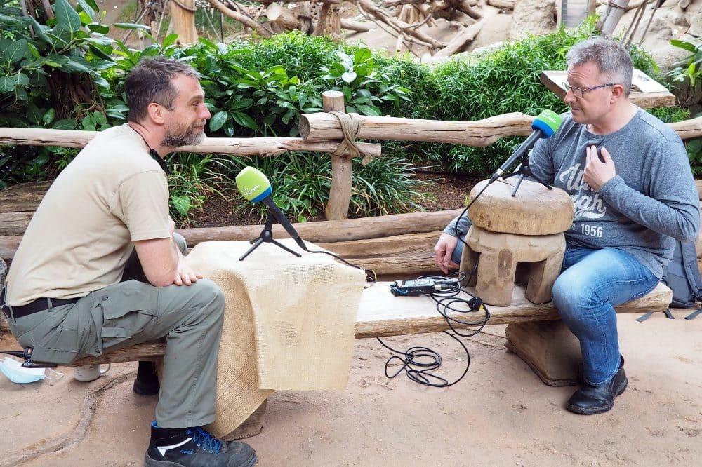 Im Podcastgespräch Bereichsleiter Daniel Geissler und MDR Zooreporter Dirk Hentze (li) © Zoo Leipzig