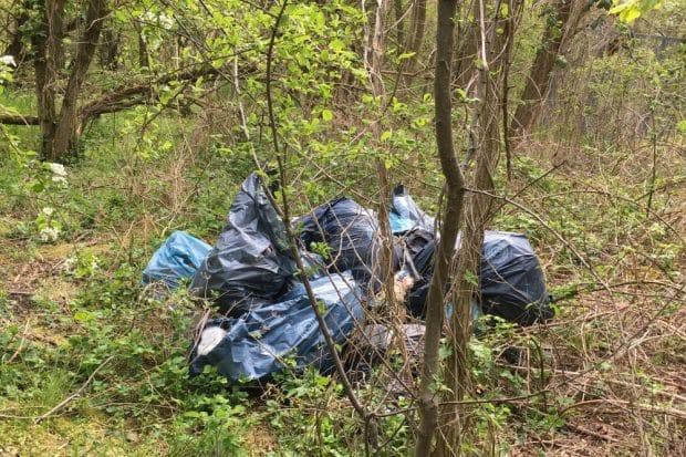 Illegal entsorgter Müll. Foto: Nick Totfalusi