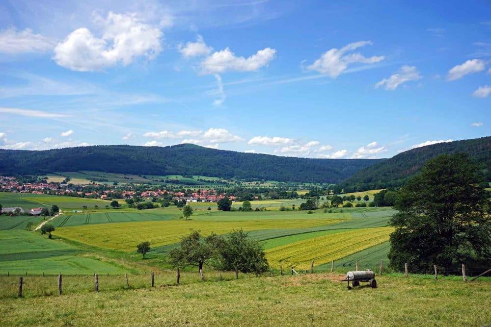 Landschaften wie diese vielfältig genutzte und reich strukturierte Agrarlandschaft im Wesertal, Niedersachsen, erfüllen viele der aus wissenschaftlicher Sicht notwendigen Eigenschaften. Ackerbau, Tierhaltung und Biodiversität unterstützen sich gegenseitig. Foto: Sebastian Lakner