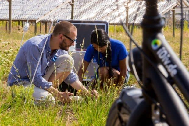 Div-Wissenschaftler erforschen den Wandel der biologischen Vielfalt und seine Konsequenzen. Foto: Stefan Bernhardt, iDiv