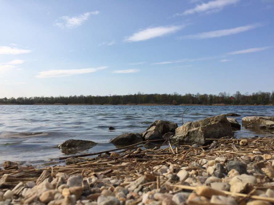 Am Ufer des Kulkwitzer Sees. Foto: LZ