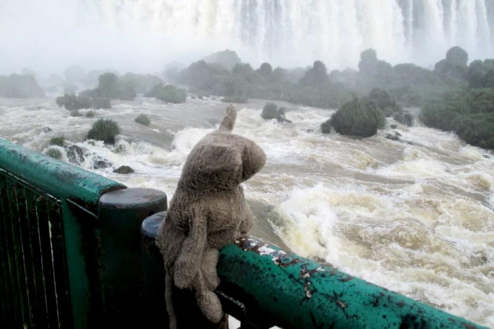 Siggi an den Iguazú Wasserfällen in Argentinien. Foto: privat