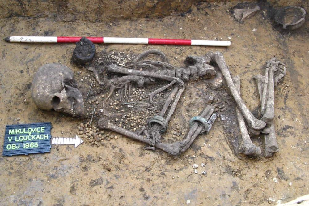 Reich ausgestattete frühbronzezeitliche Bestattung aus Böhmen, Tschechische Republik. Foto: Michal Ernée, Jarmila Švédová