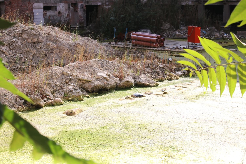 Eine Baustelle, die durch eine einstweilige Verfügung verlassen wurde. Foto: LZ